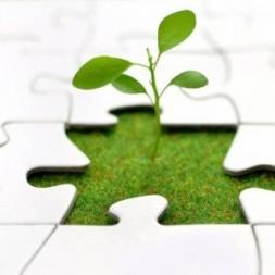 Открыт прием документов для признания субъектов МСП социальным предприятием
