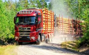 """Компания """"Свеза Новатор"""" ищет подрядную организацию на перевозку круглых лесоматериалов"""