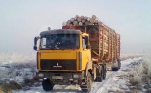"""Компания АО """"ЧФМК"""" строительство лесовозной дороги 1 км"""